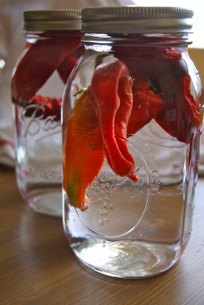 Christmas Foodie No. 1: Pepper-Infused Vodka