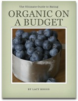 The Ultimate Guide to Eating Organic on a Budget