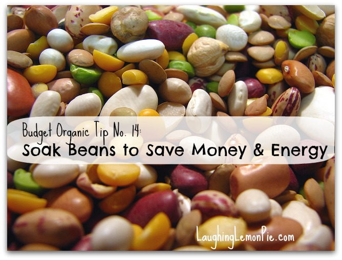 Soak Beans to Save Money and Energy {Budget Organic No. 14}