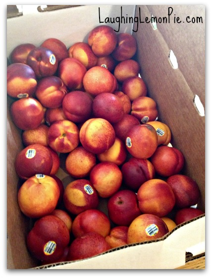 buying in bulk nectarines