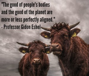 Professor Gidon Eshel quote from A Bone To Pick