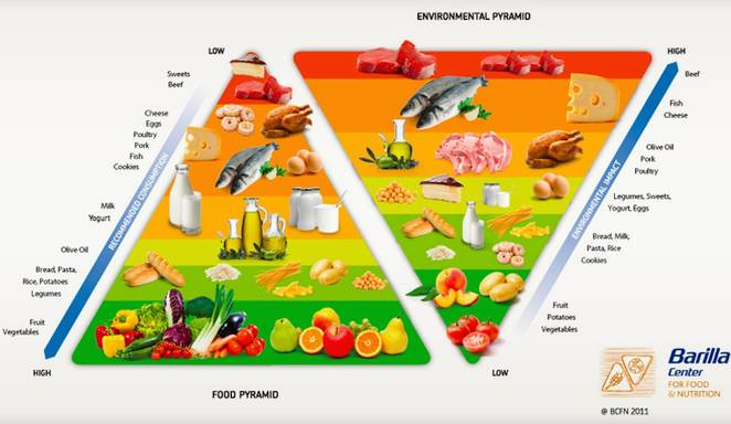 Treehugger Double Food Pyramid - Eating for Health AND Sustainability